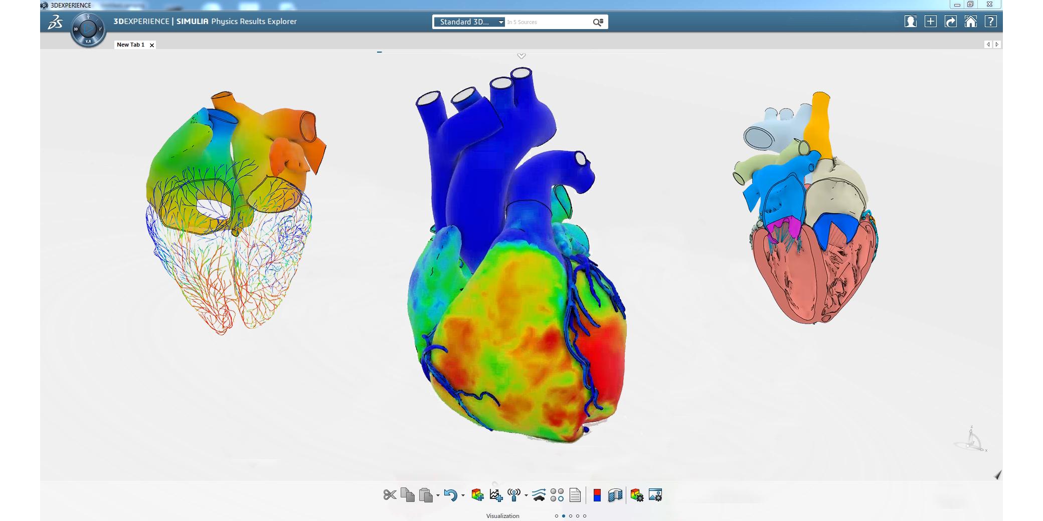 Living Heart Human Model